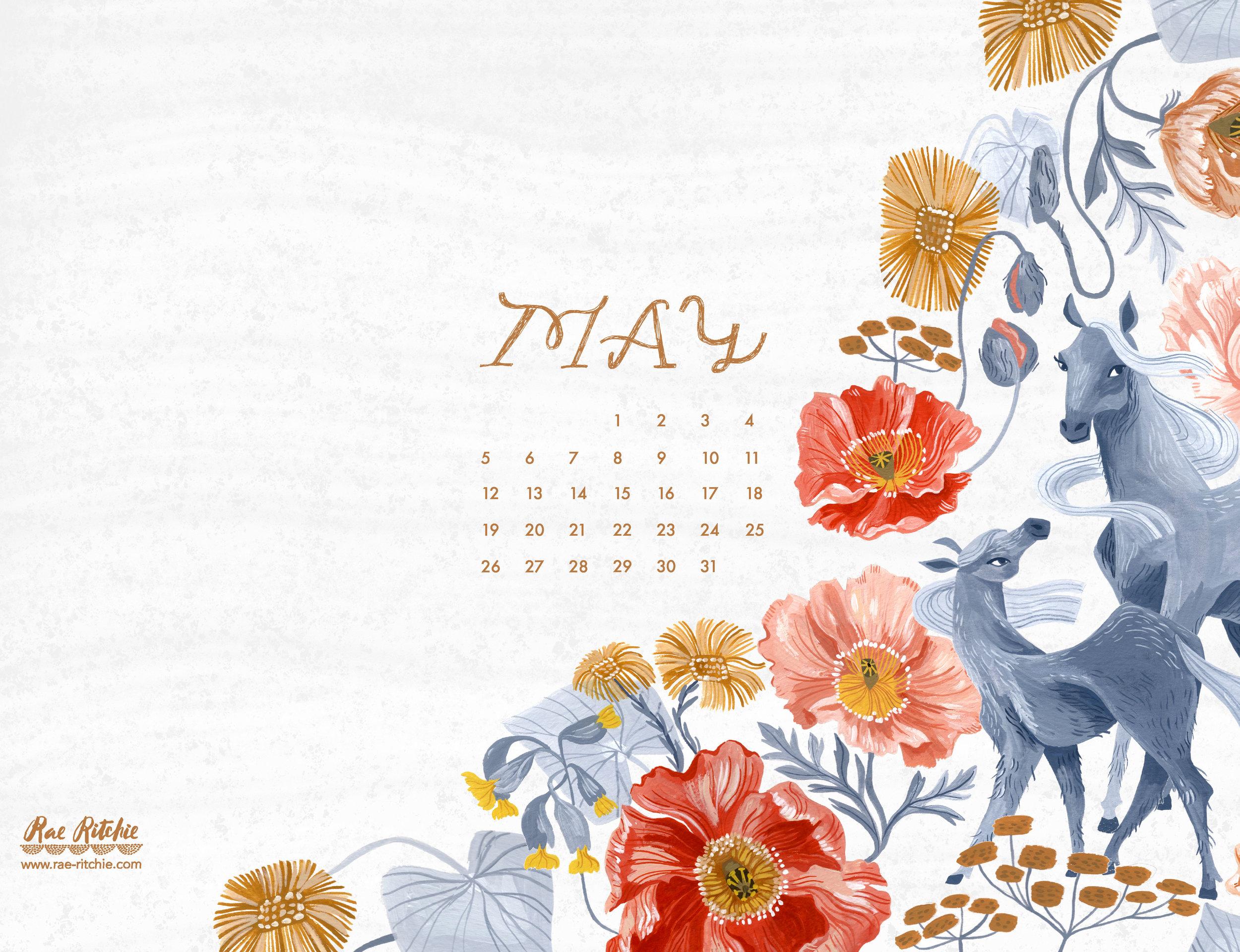 May19__Ipad.jpg