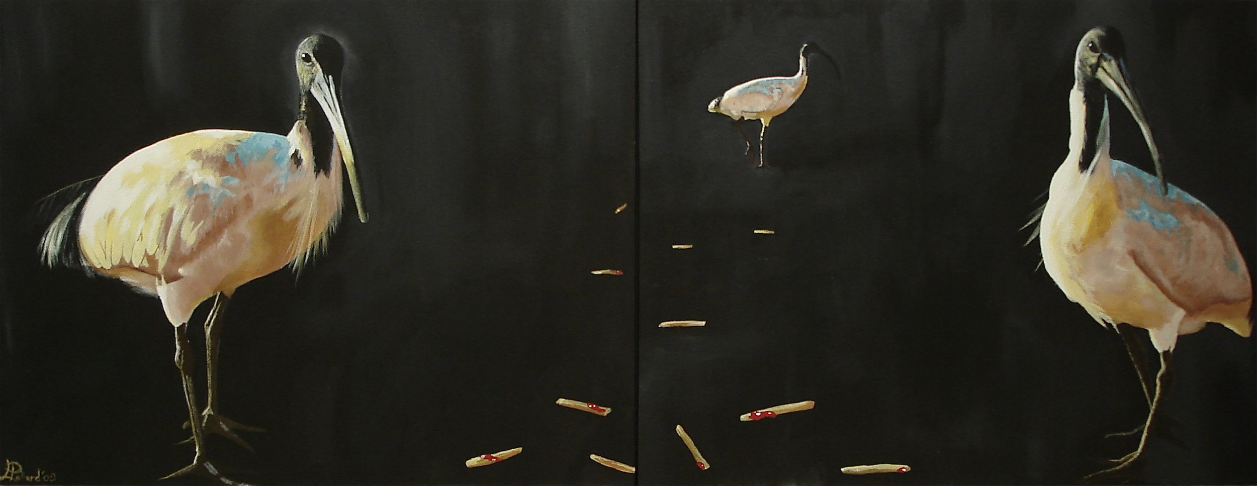 "Three Ibis  - acrylic on canvas 30"" x 40"" x 2"