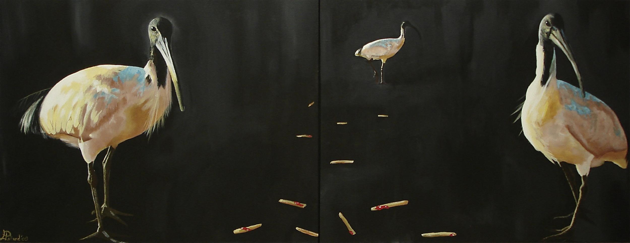 "Three Ibis  - acrylic on canvas 30"" x 40"" x 2"