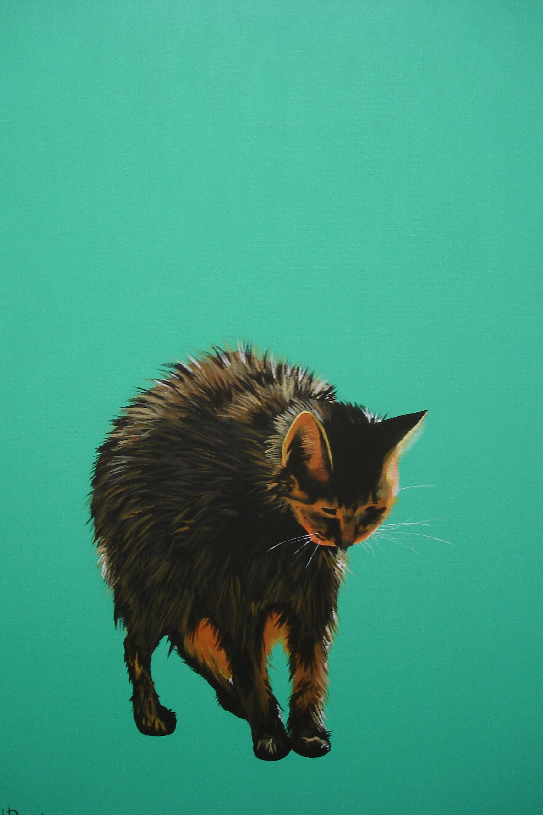 "The Wet Cat  - acrylic on canvas 24"" x 30"""