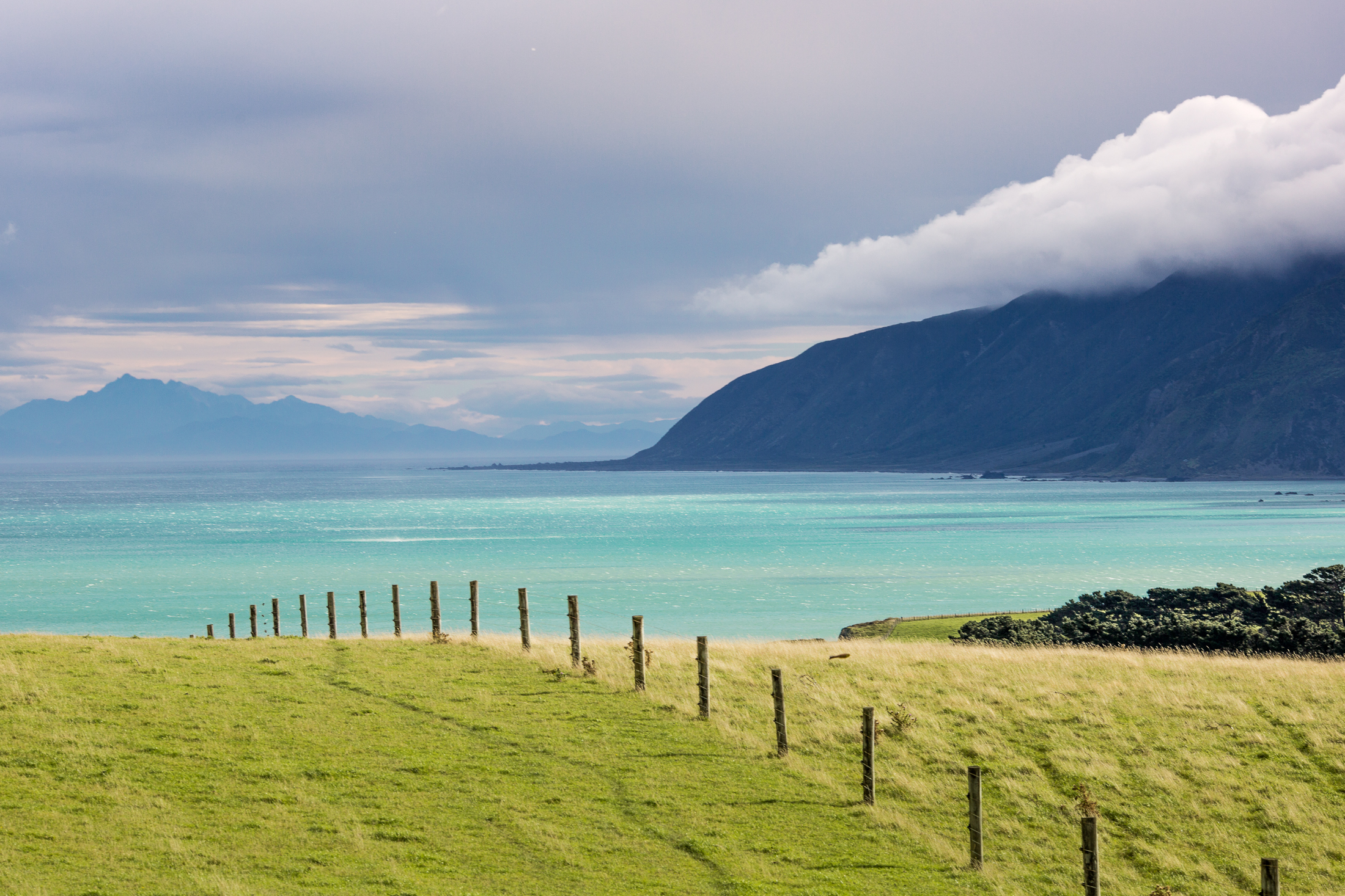 170218_NZ-3071.jpg