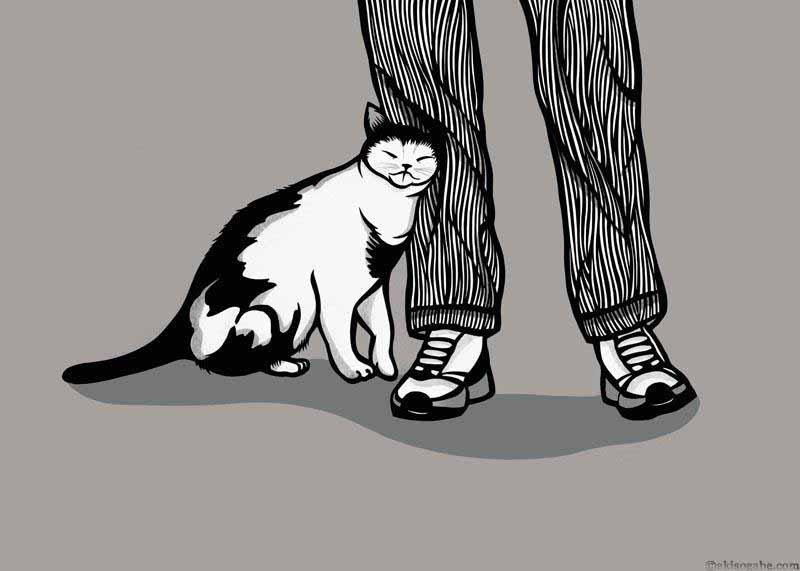 My Sweet Kitty.jpg