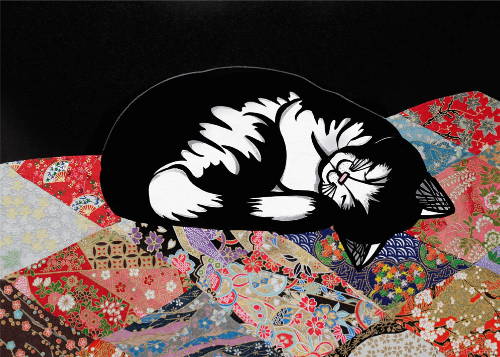web Kitty on a Blanket 3.jpg