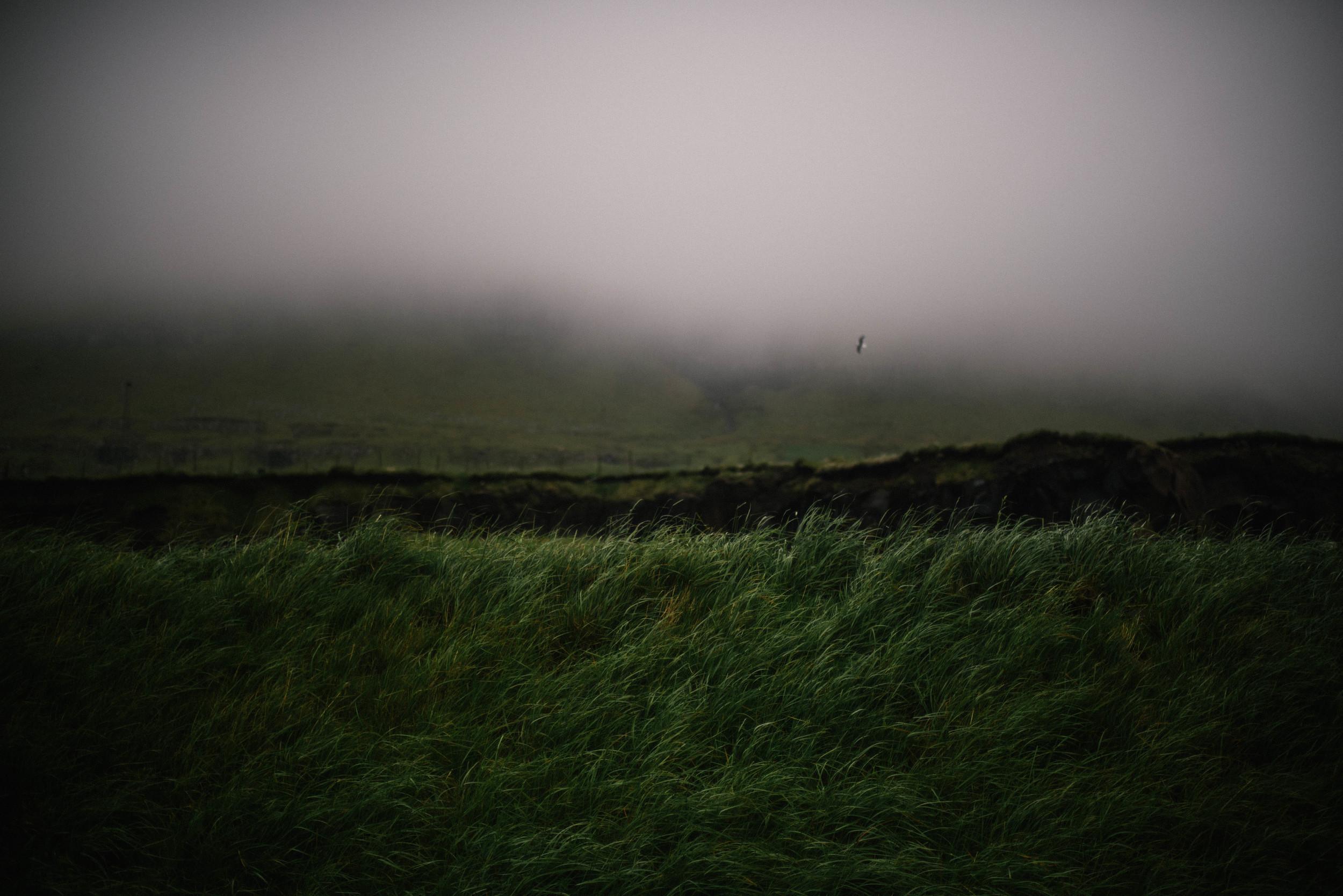 Faroes_Torshavn_1-6283.jpg