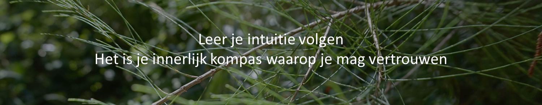 Intuitief Leven en Ondernemen 3.png
