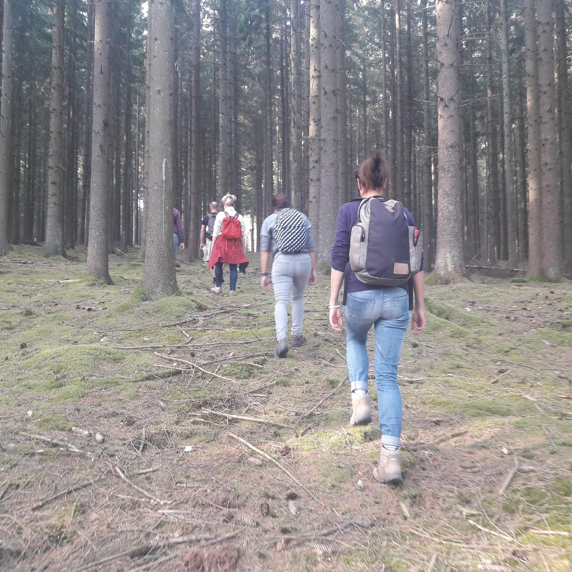 Opleiding+Wandercoaching+-+wandering.jpg