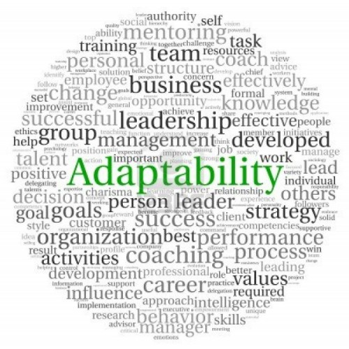Adaptability_Image - Edited.jpg