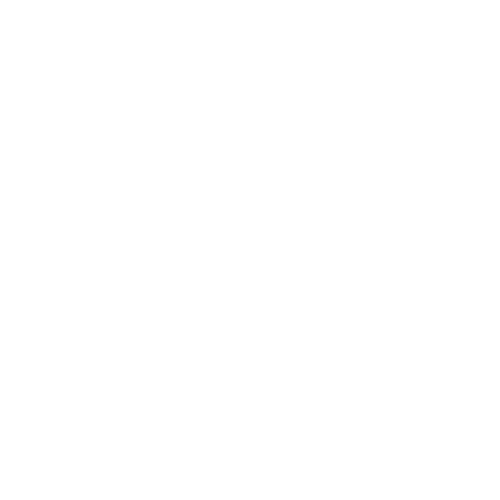 160802-SLV-INDIA-500x500white (4) (1) (2).png