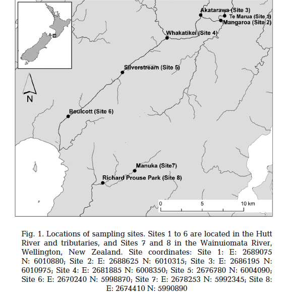 Samples from Dr Ryan and team - Six sites were sampled on the Hutt River and its tributaries and 2 on the Wainuiomata River.These were selected based on knowledge of high benthic cyanobacterial abundance at these locations