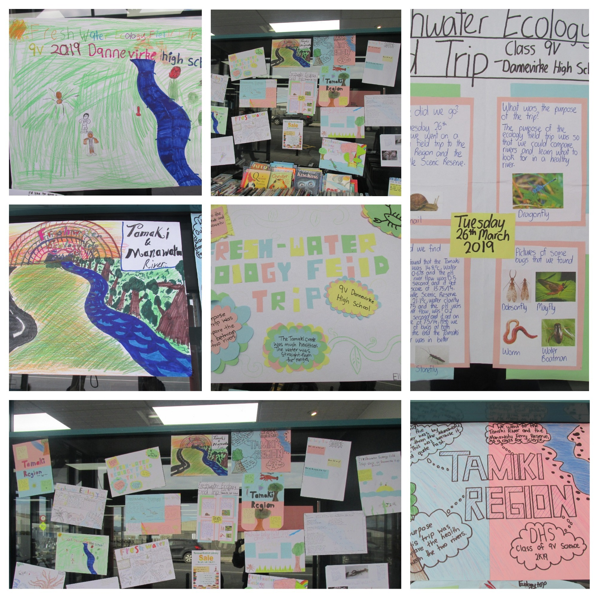 - Students were fully involved in converting their scientific knowledge into communication that will benefit their peers and wider community. Their work on our freshwater stream was featured in their April High school newsletter, whilst a larger display was created for the Tararua district library in the month of July.