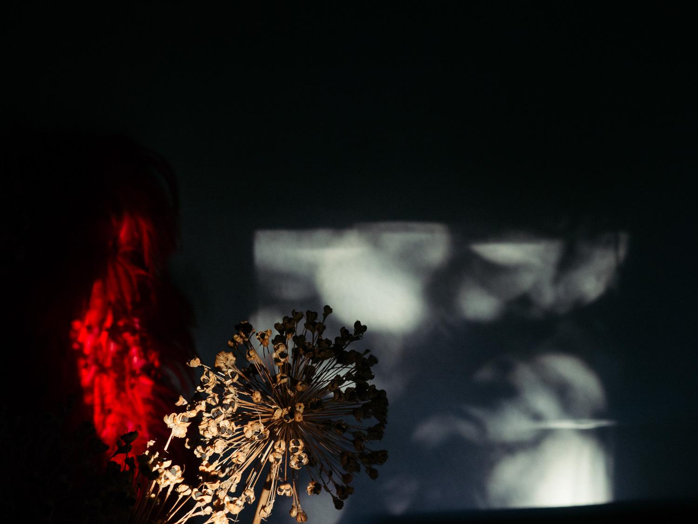 WISFH-ghostpressure-02.jpg