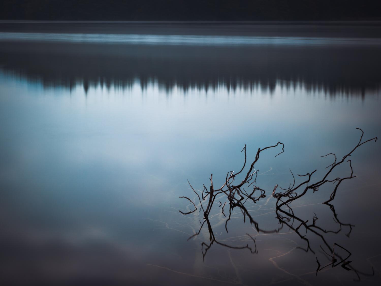 WISFH-ghostpressure-01.jpg
