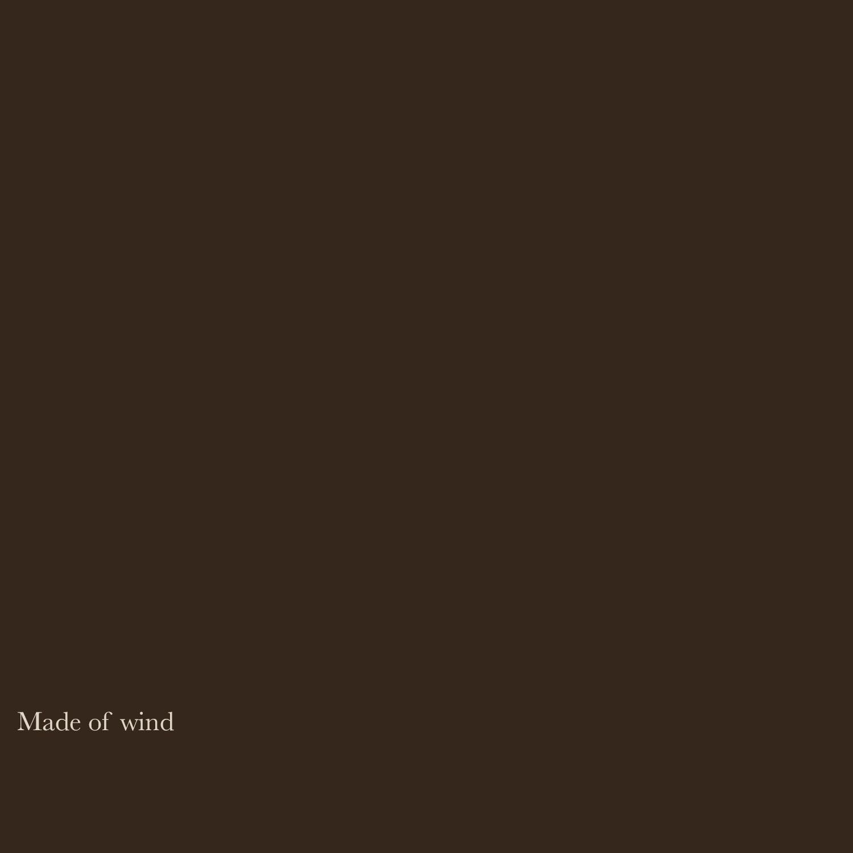 WISFH-madeofwind-title.jpg
