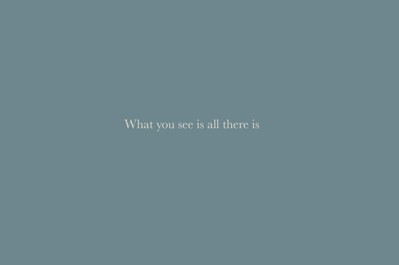 WISFH-whatyouseeisallthereis-title.jpg