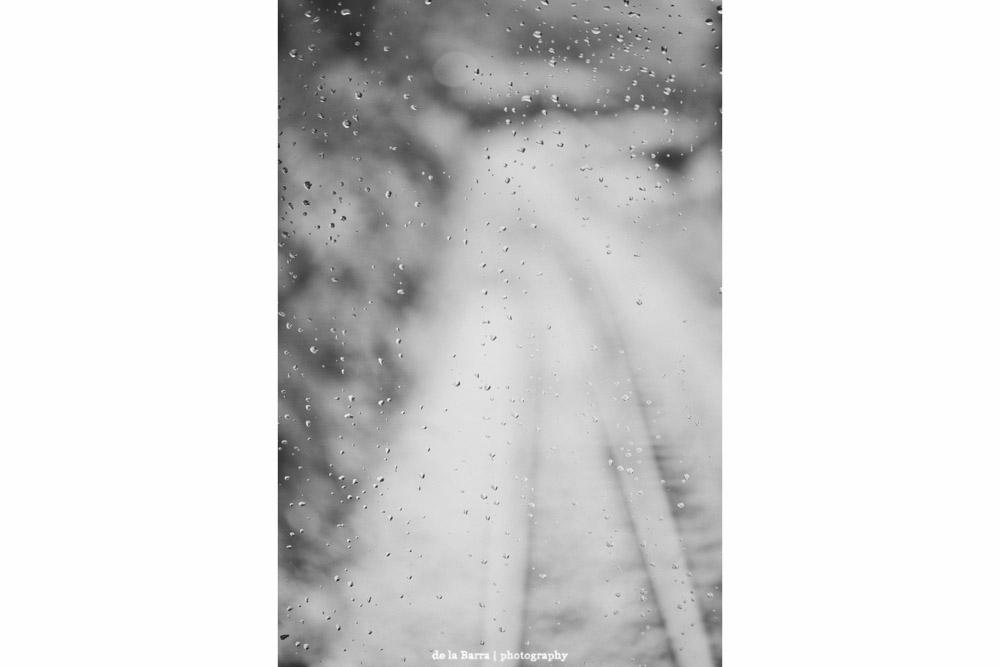 delabarraphotography-1.jpg