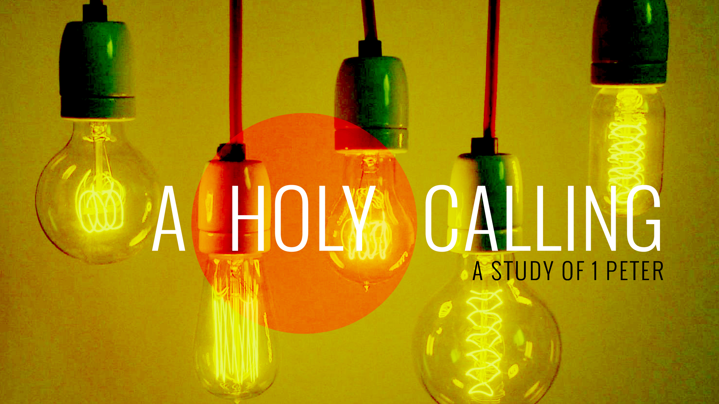 A Holy Calling Series