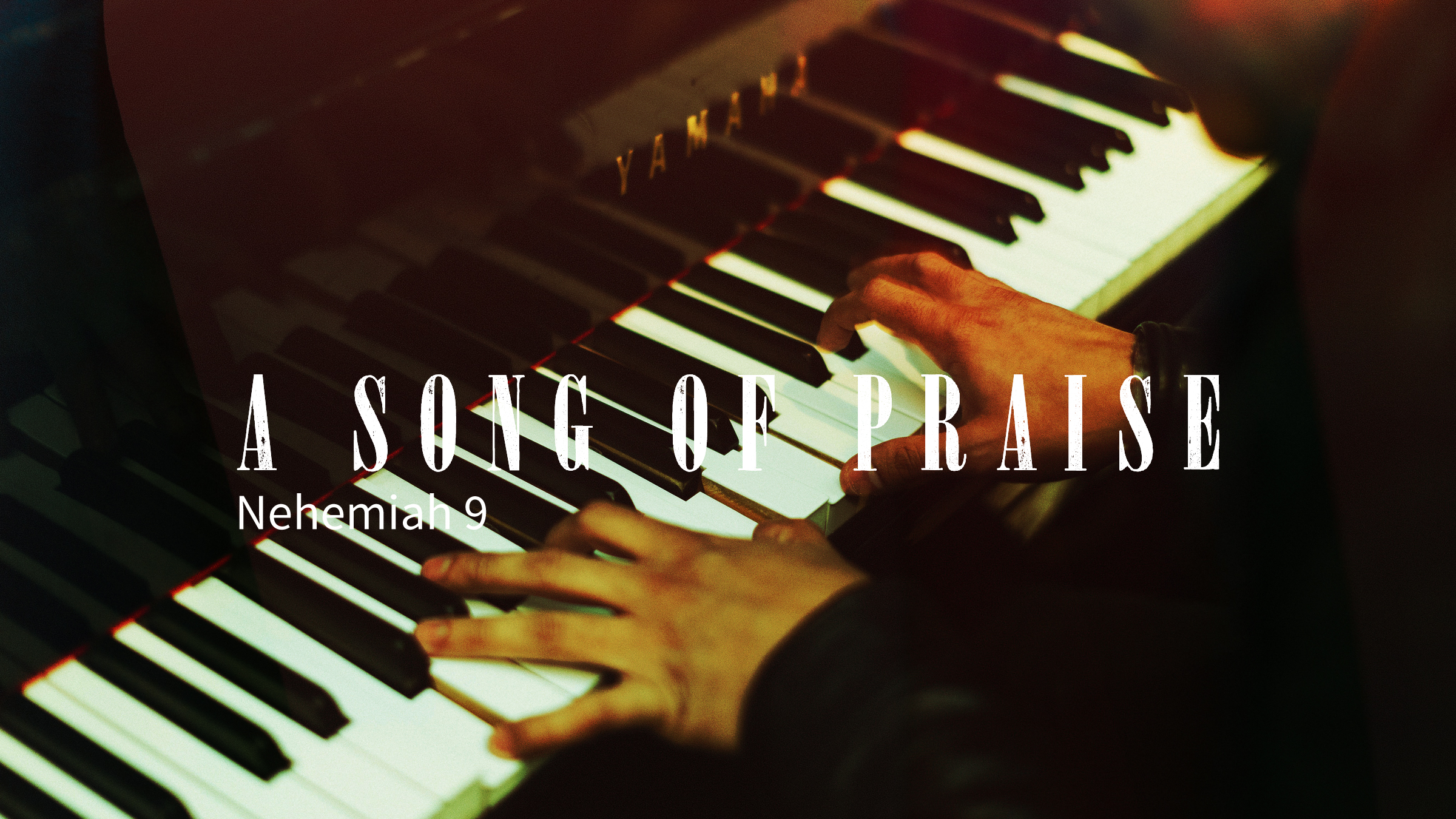 A Song of Praise.jpg