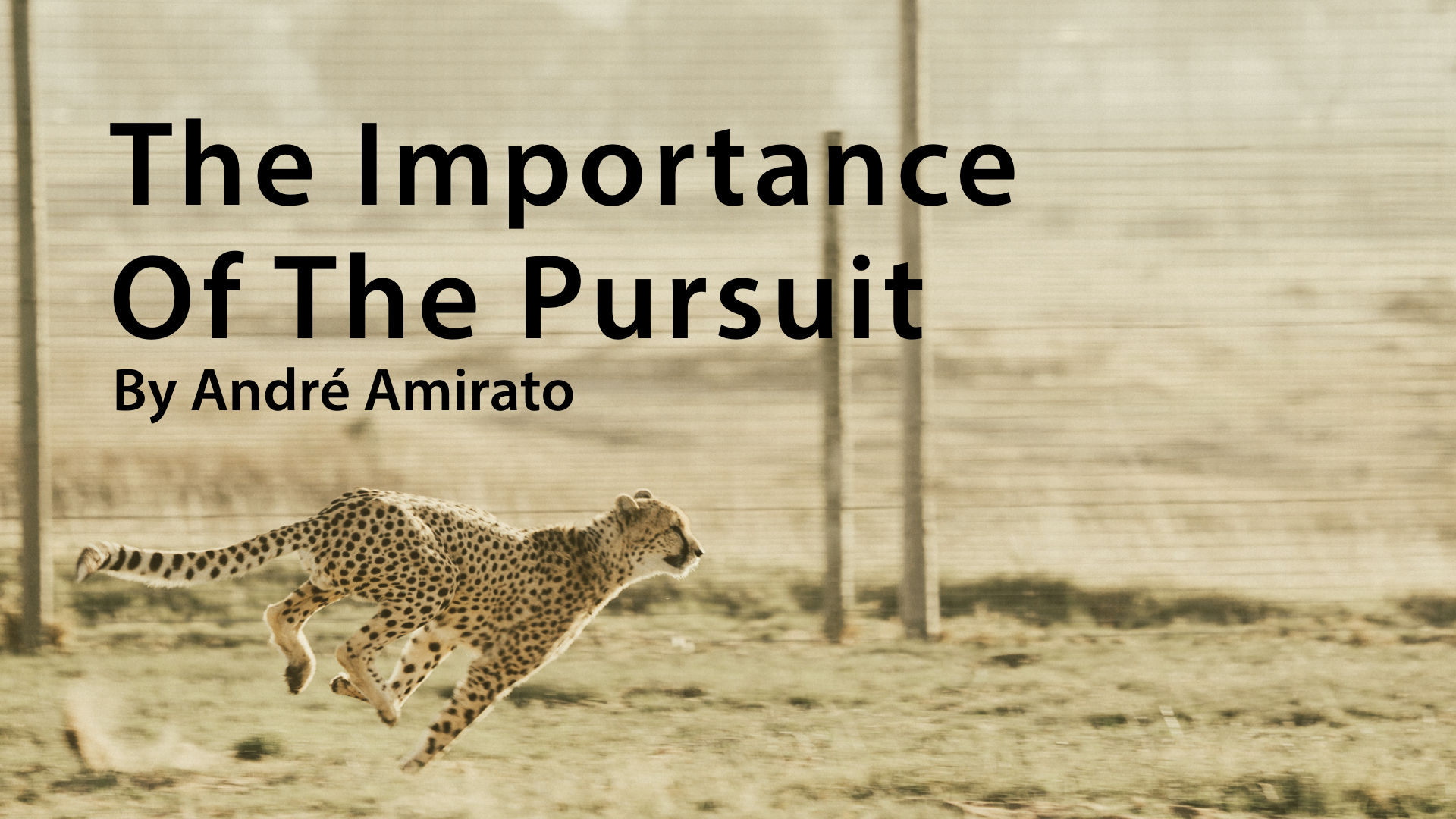 2018-07-08-The-Importance-of-the-Pursuit-title-slide.jpeg