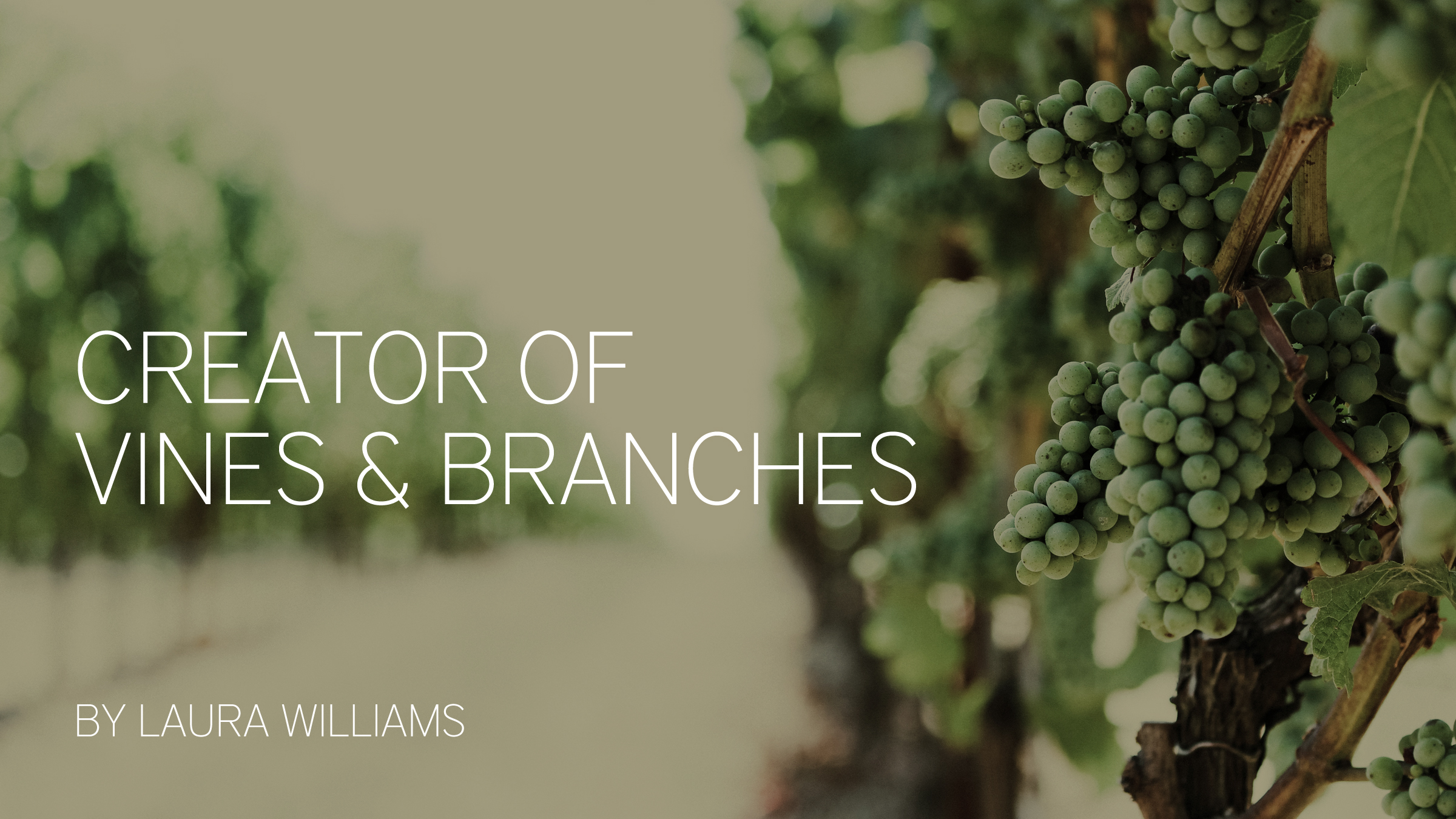 creator of vines and branches.jpg