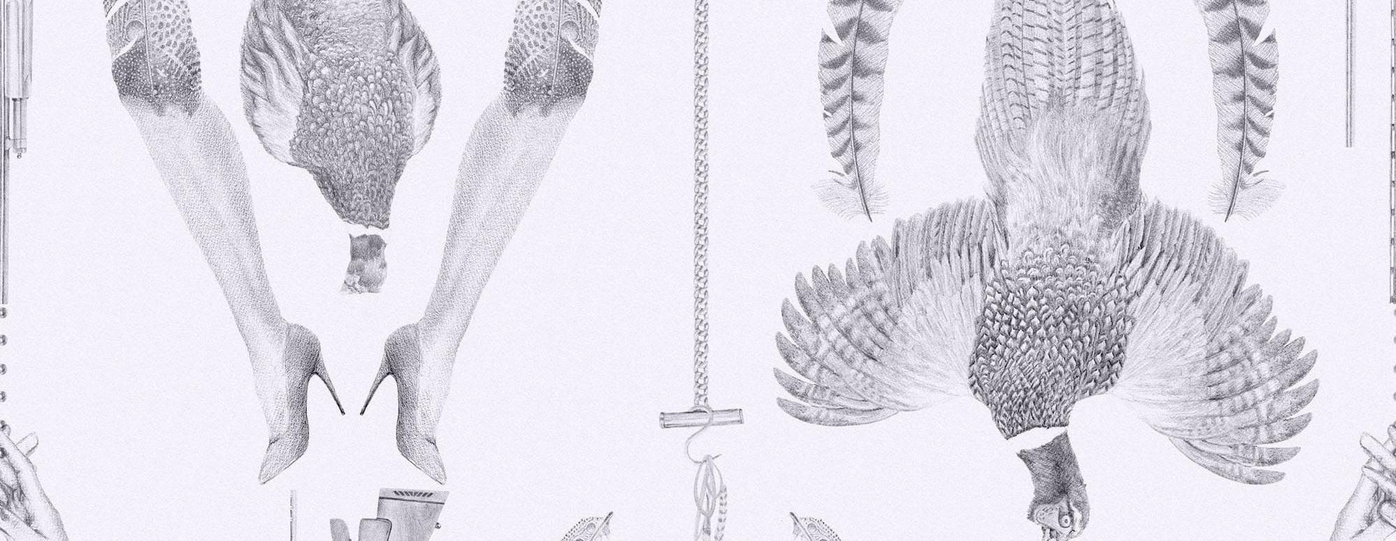 Pheasant-Ammonite-1.jpg