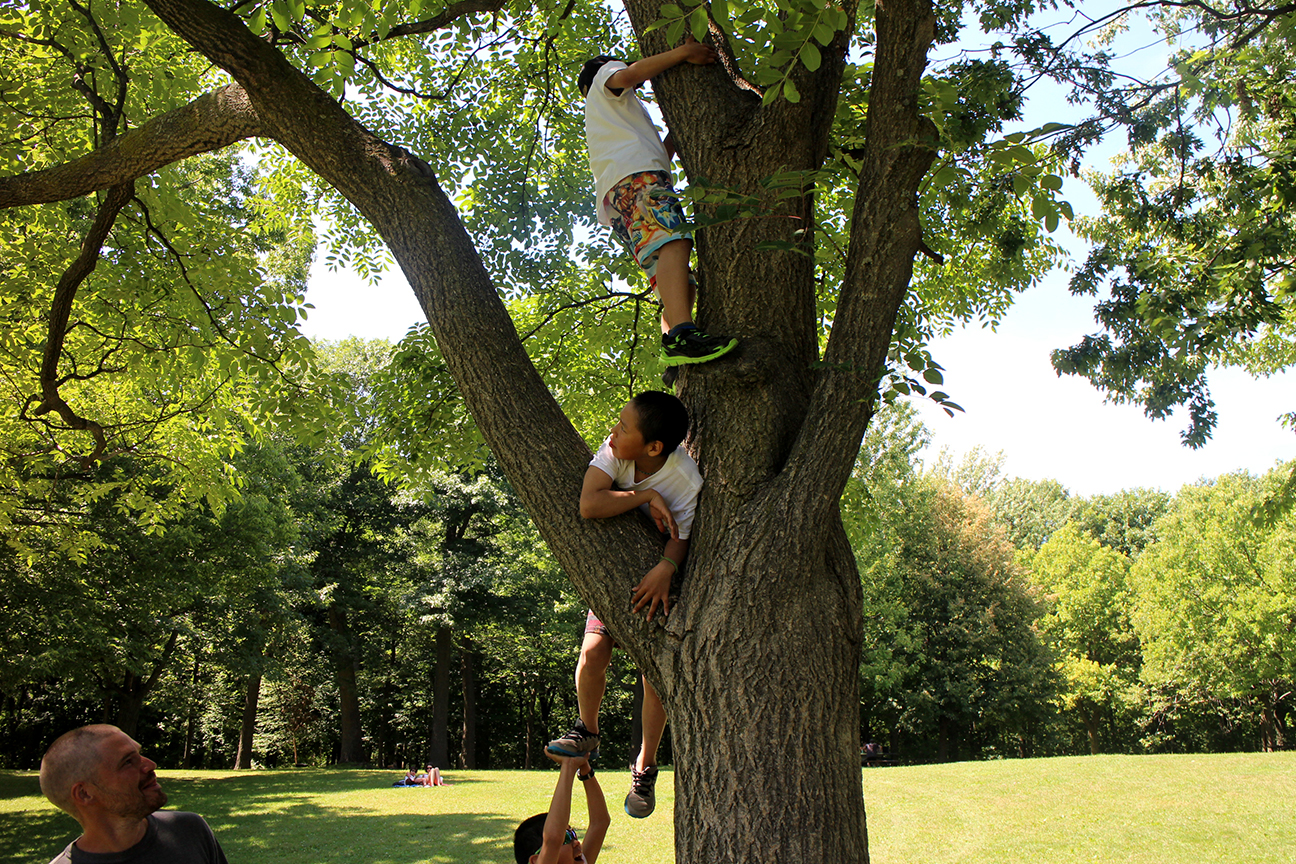 Photo by Susan Rowsell  First tree climb ever!!!!