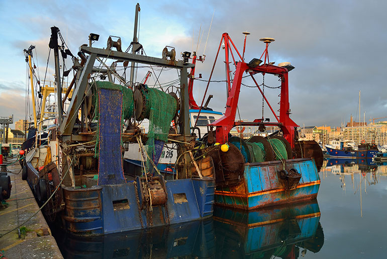 Plymouth Fisheries