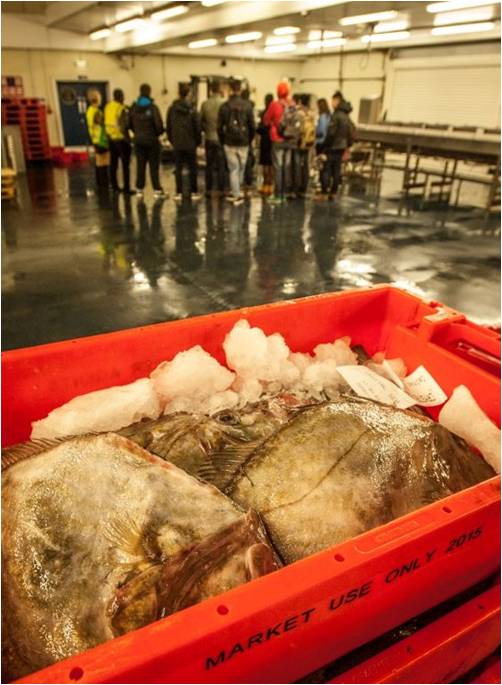 National Seafood Week at Plymouth Fisheries