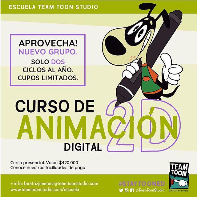 Último curso nivel 1 del año! No pierdas más tiempo. Inscríbete! Www.teamtoonstudio.com/escuela  #escuelateamtoonstudio #Animacion #Animacion2D #Ilustracion #StayTooned #ToonBoomHarmony