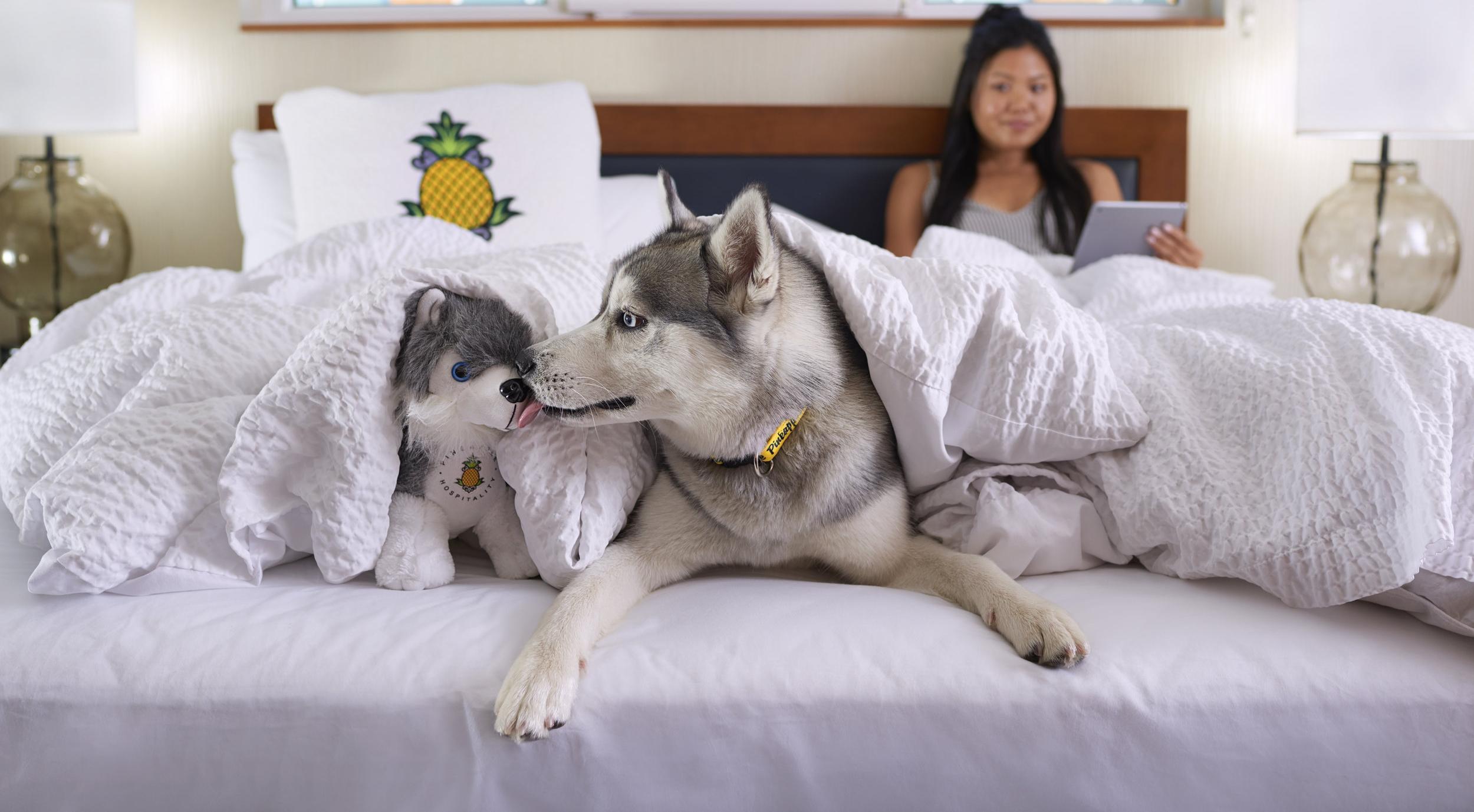 Lifestyle-2017-Girl-Dog-Husky-Room-Bed-DSC-0883