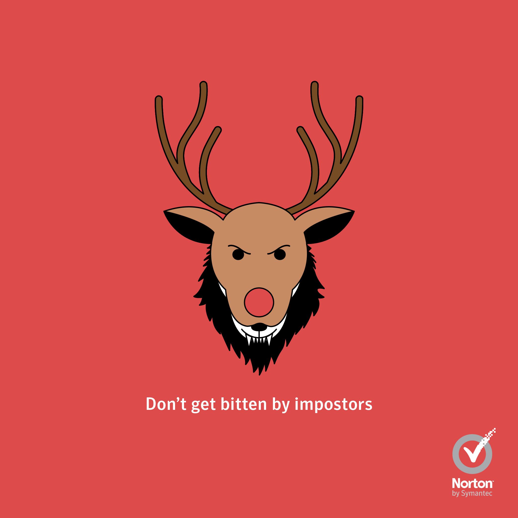 Norton Christmas_Fake Antivirus Software.jpg