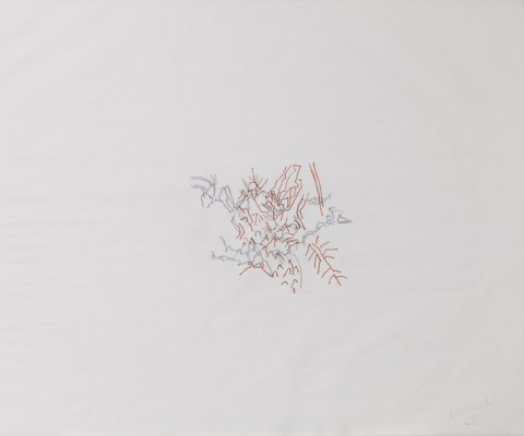 """""""Brume #1"""" Double Drawings Indian ink on tracing paper  Dimension: 14 x 17 inches"""