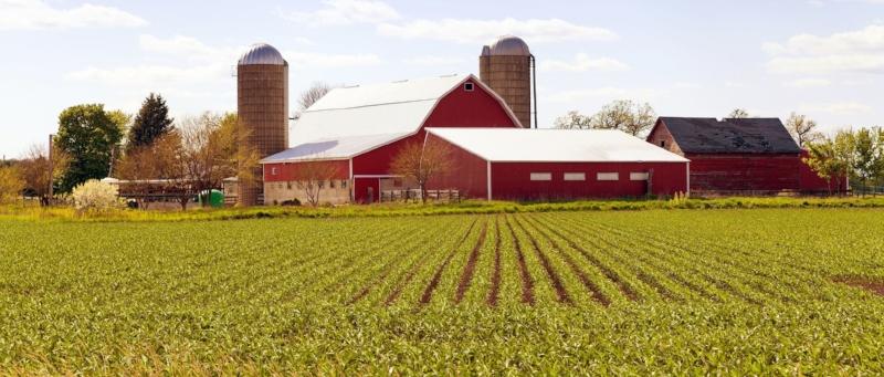 1031 Exchange of Farmland