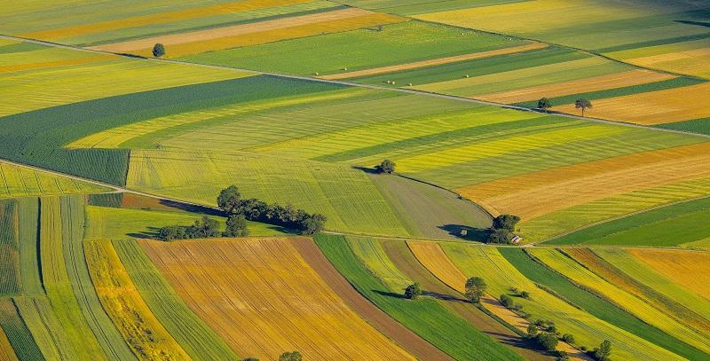 Farmland 1031 Exchange