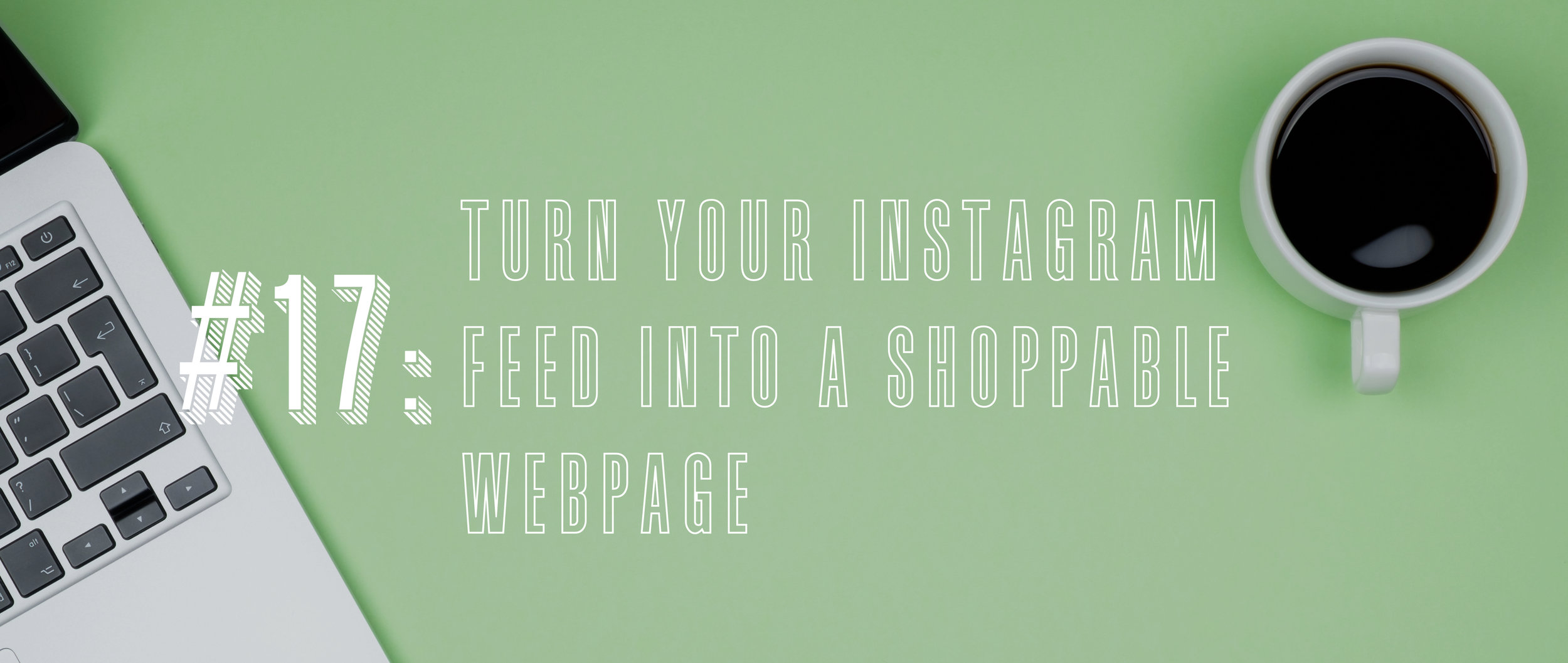 17 Turn Your Instagram Feed into a Shoppable Webpage.jpg