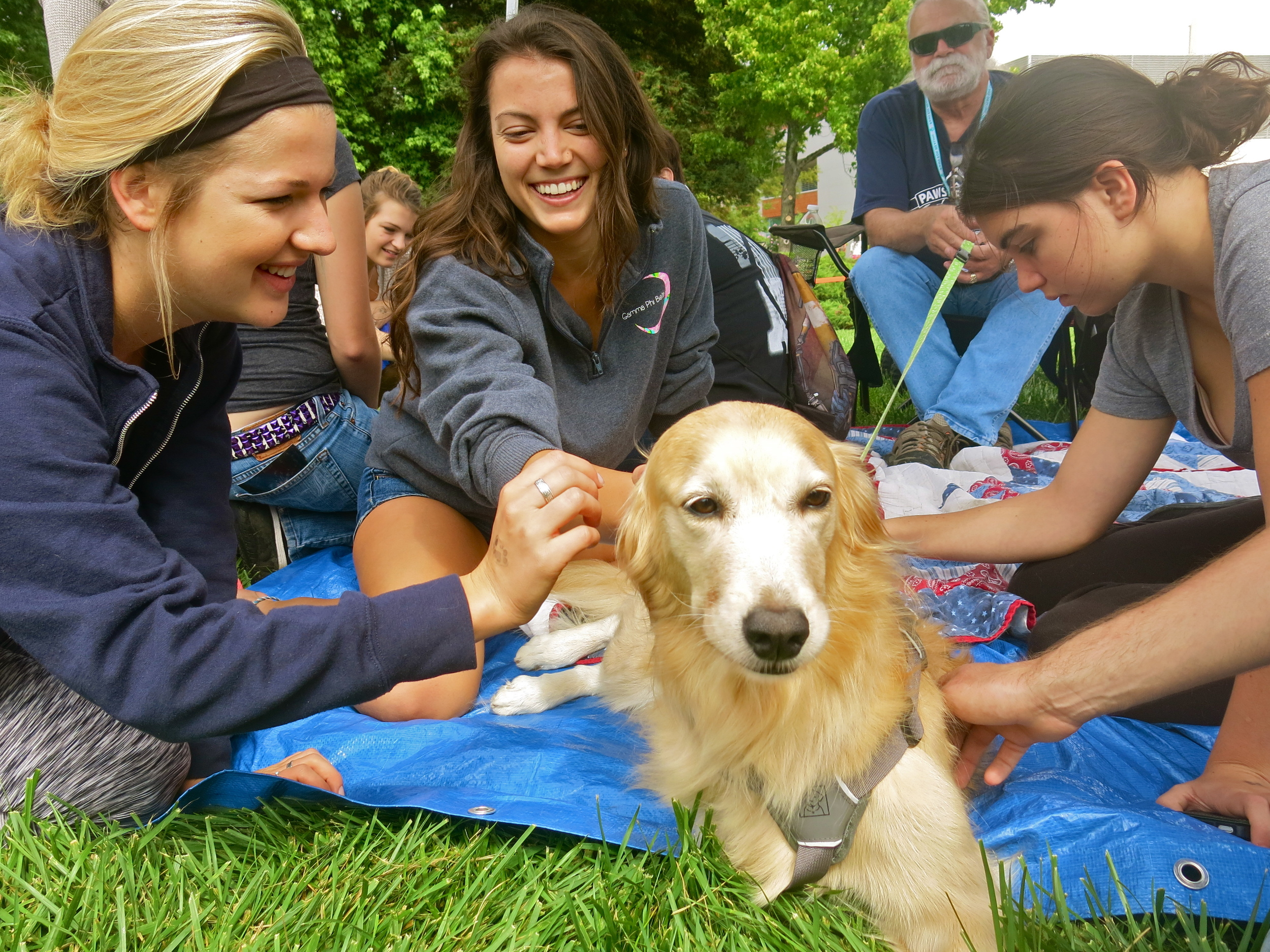 STAR // Maud Busson   Students flocked to play with all different breeds of dogs where they could escape from the stresses of everyday life.