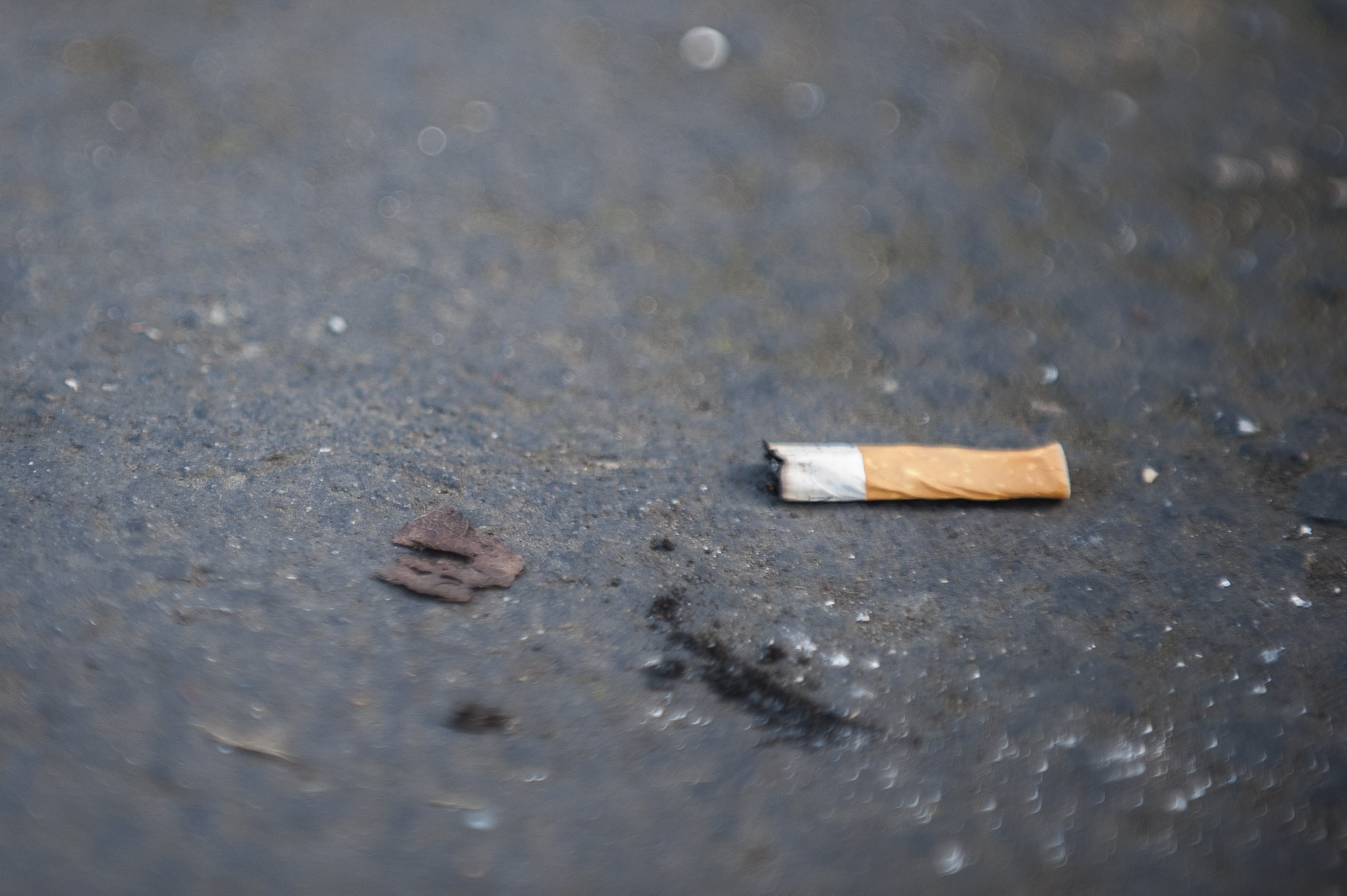 STAR // Connor Gibson   Sonoma State University will be the second smoke-free California State University campus beginning July 1, 2015.