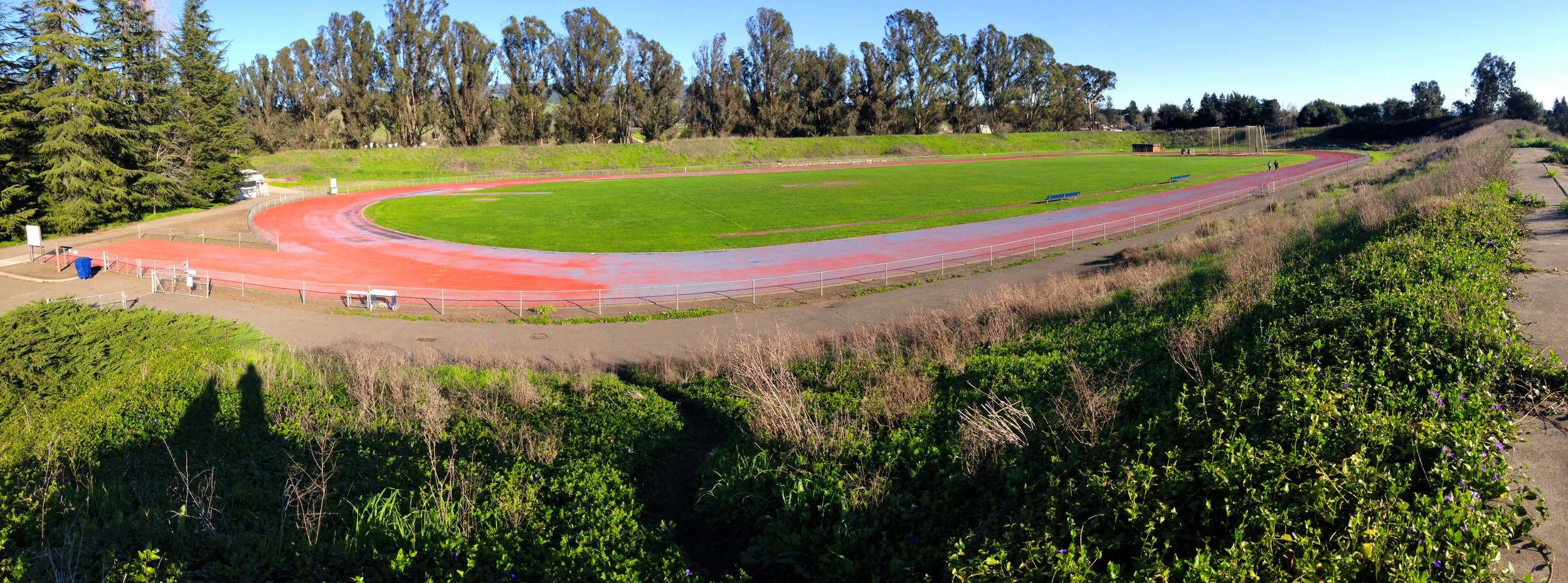 STAR // Niquie Wilson   Sonoma State University's women's track and field team was disbanded after a lack of interest from student-athletes and lack of adequate facilities in 2007. In the summer it was announced the team would return to Sonoma State after much interest from the student body.