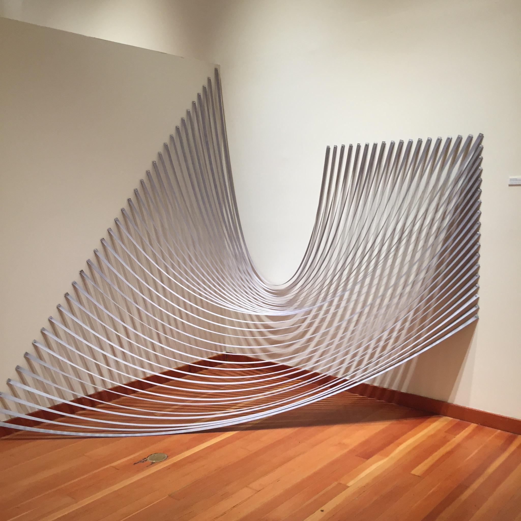 STAR // Justin Freeman  The Sonoma State University Art Gallery featured three professional artist's work with a common theme: the use of lines.