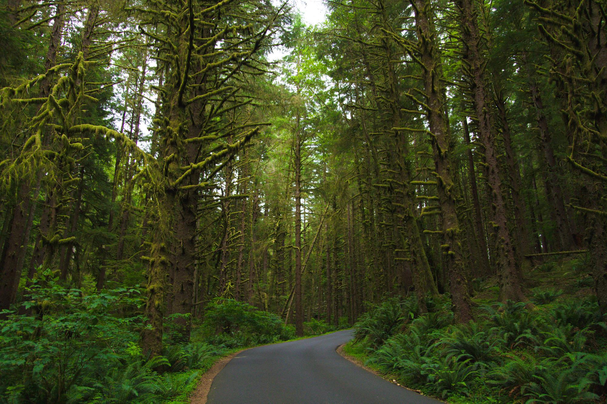 Oregon_2015-0012.jpg