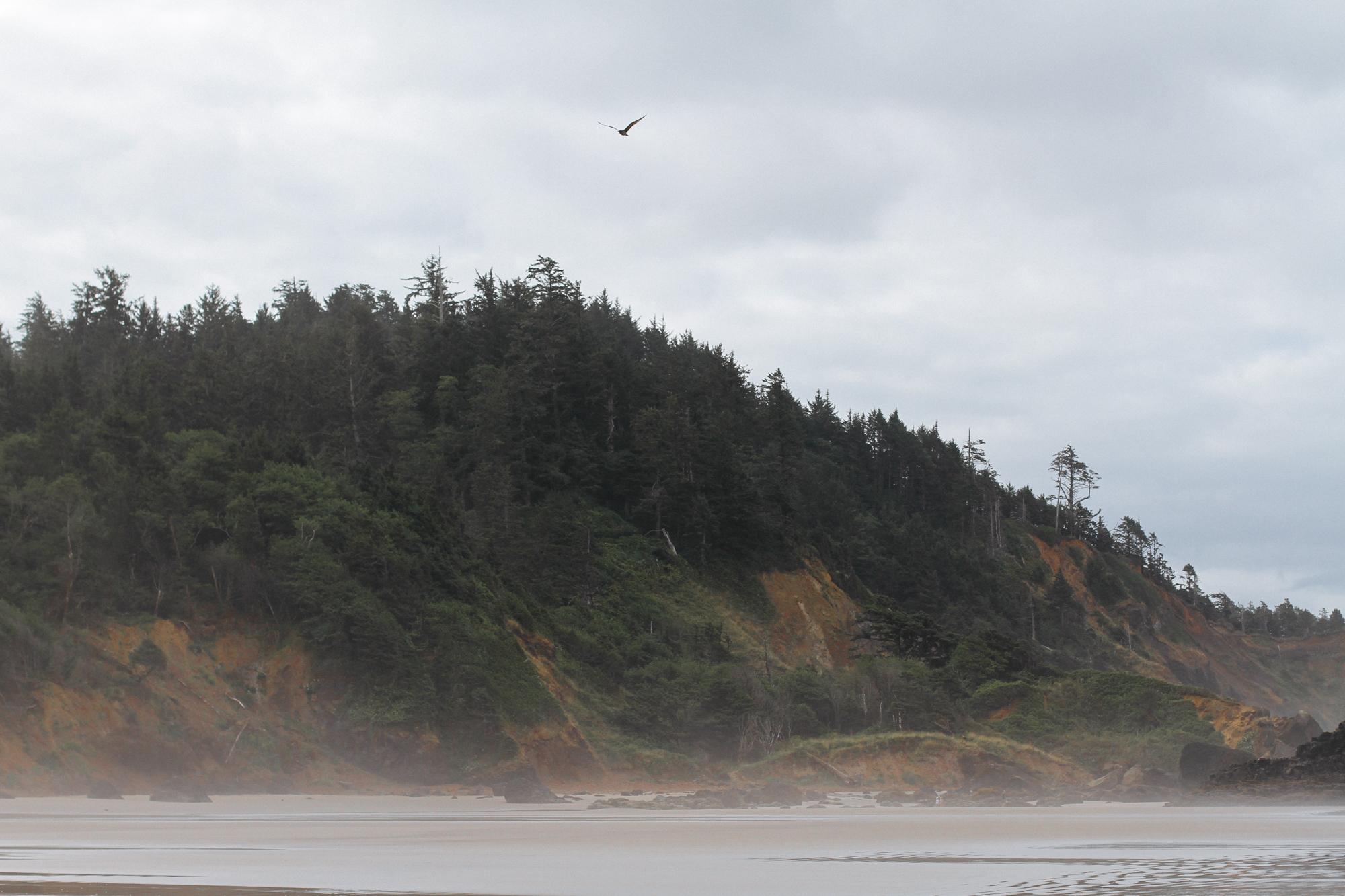 Oregon_2015-0654.jpg