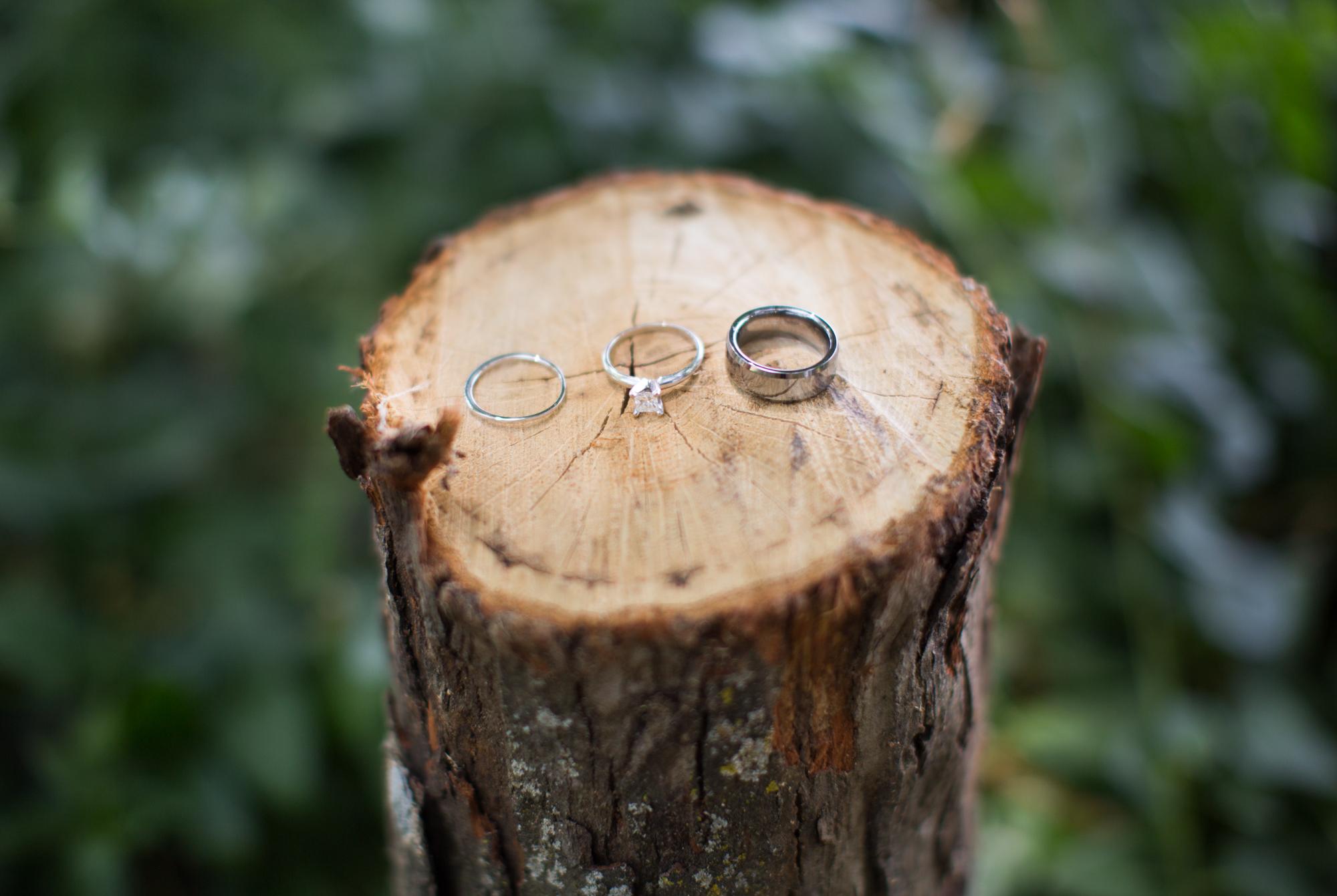 Lauren + Darren Ledbetter Wedding_DP_2016-2503.jpg