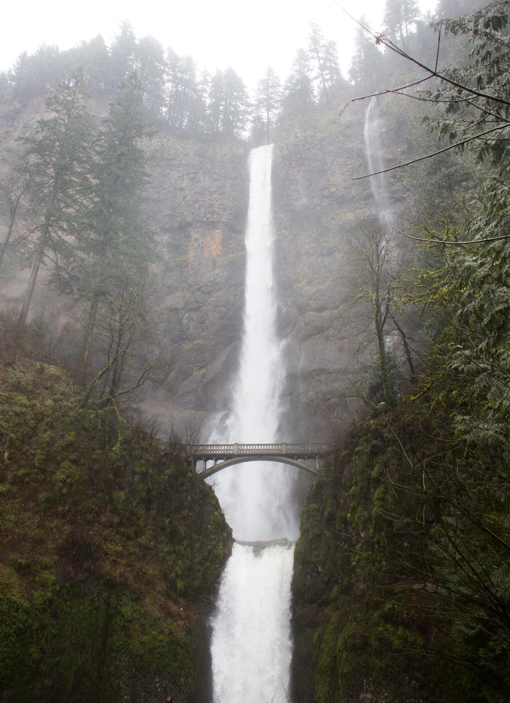 Oregon-2549.jpg