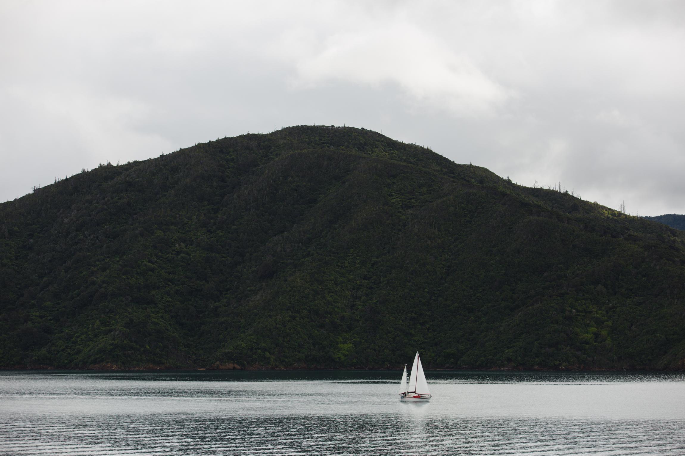 New Zealand-0313.jpg