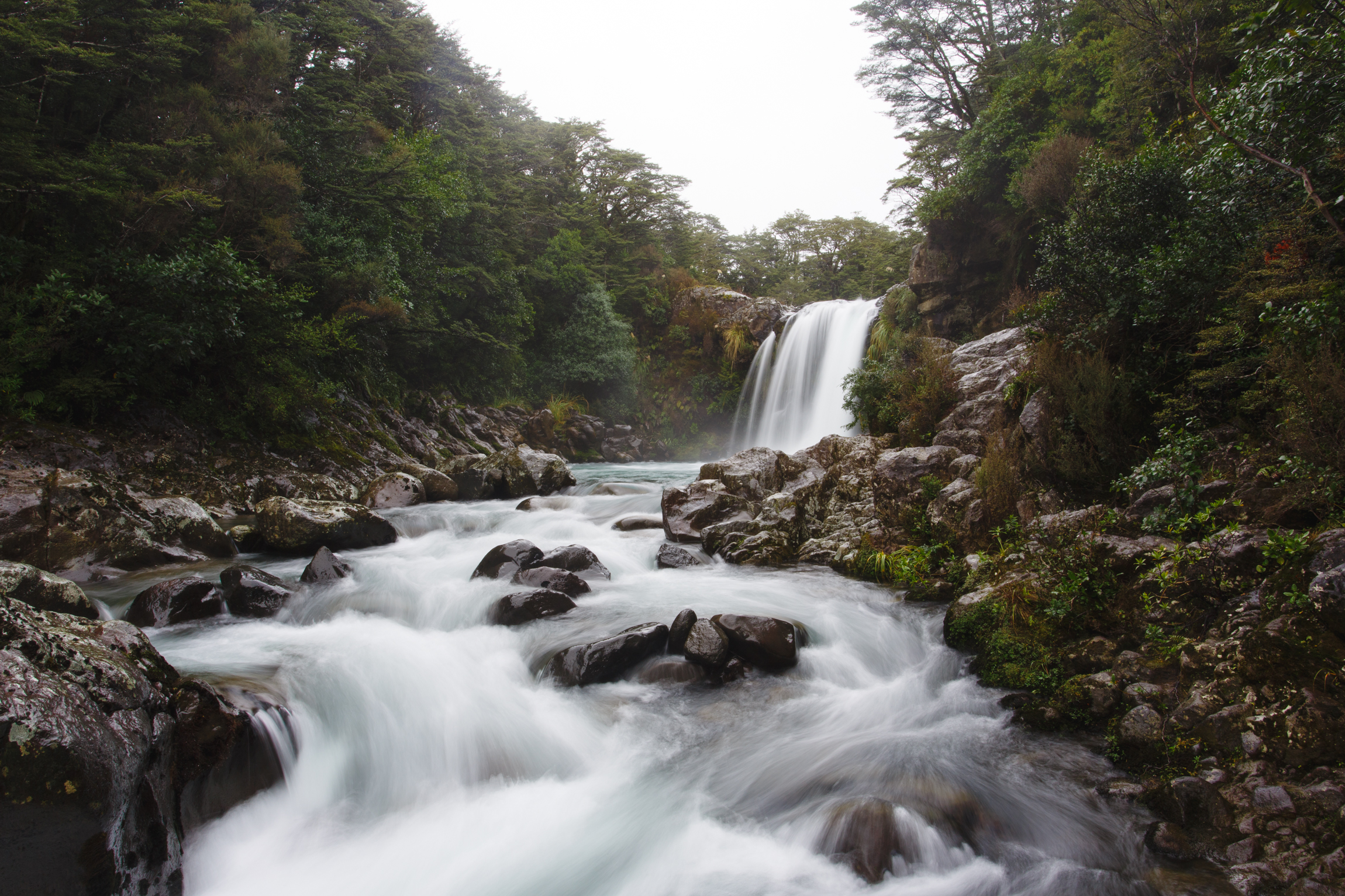 New Zealand-9836.jpg