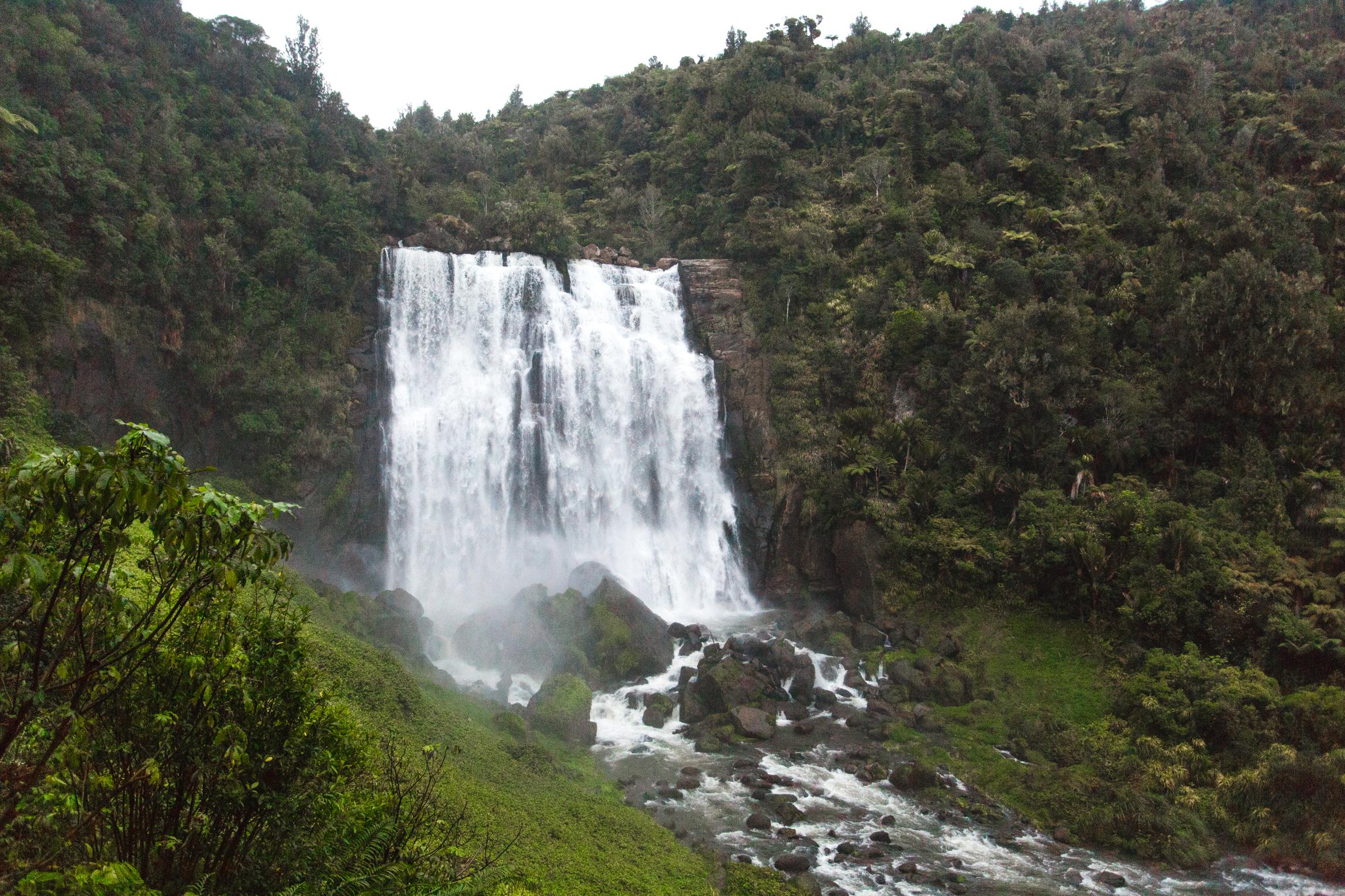 New Zealand-9727.jpg
