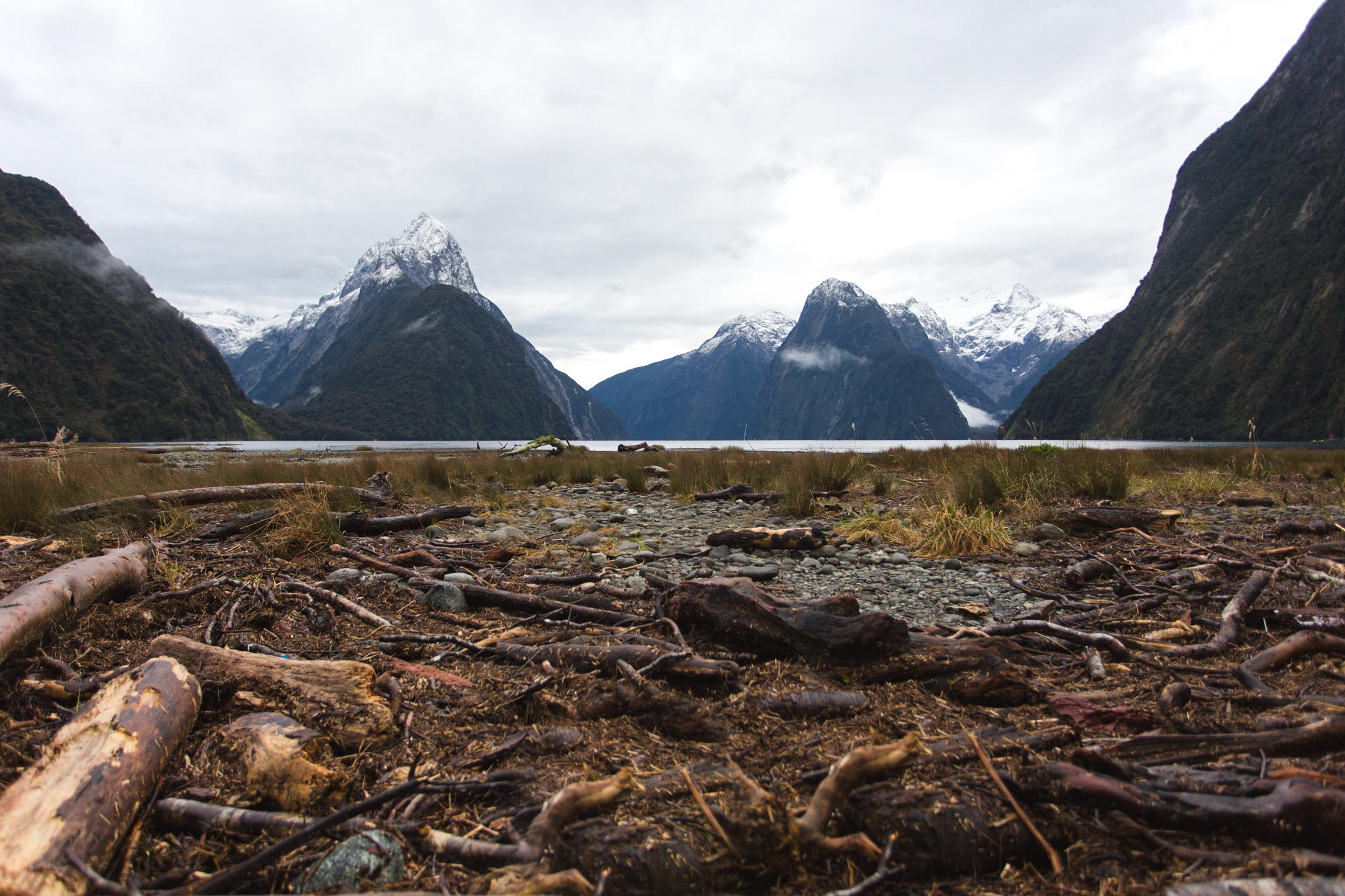 New Zealand-0022.jpg