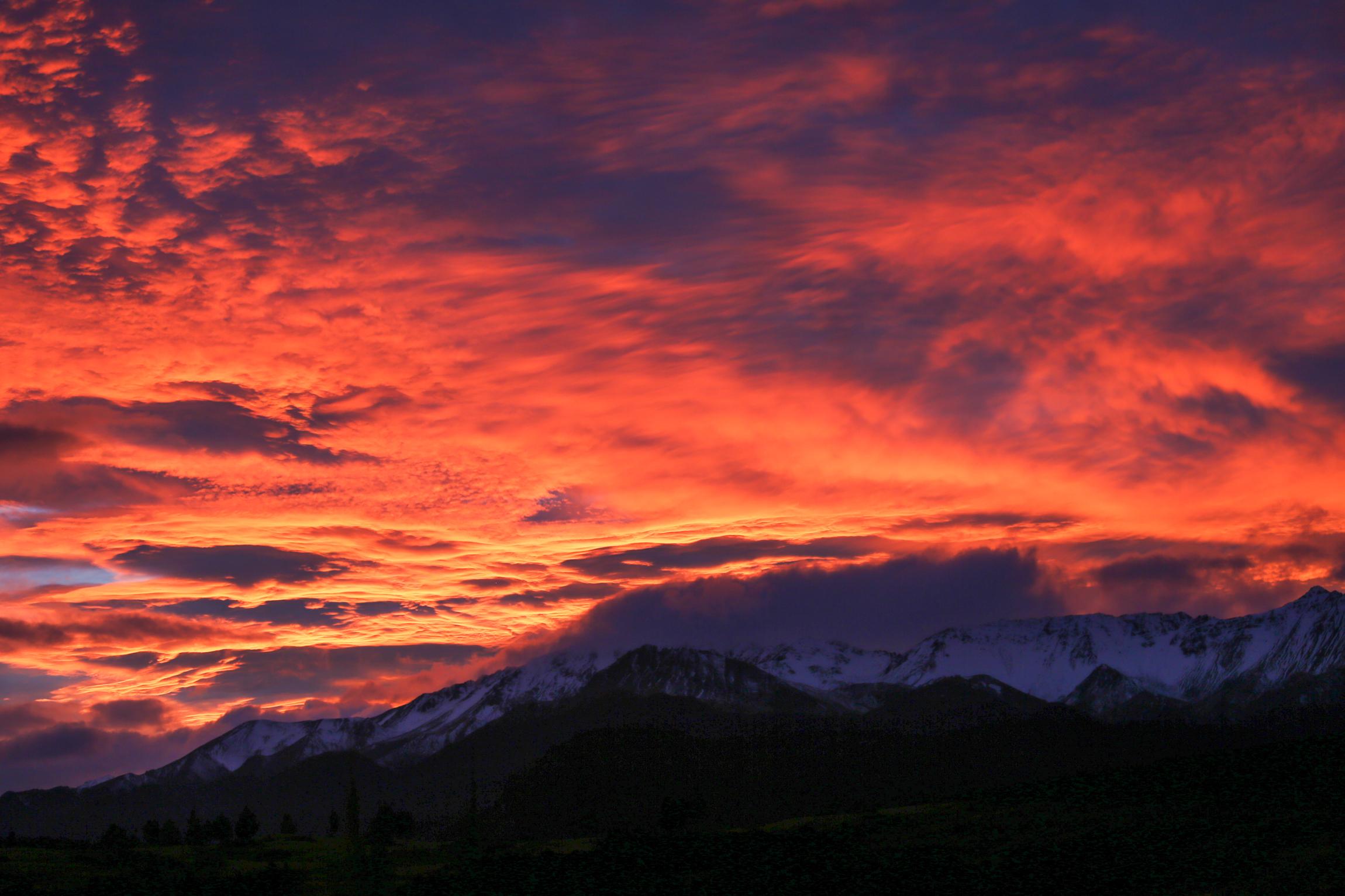 New Zealand-9712.jpg