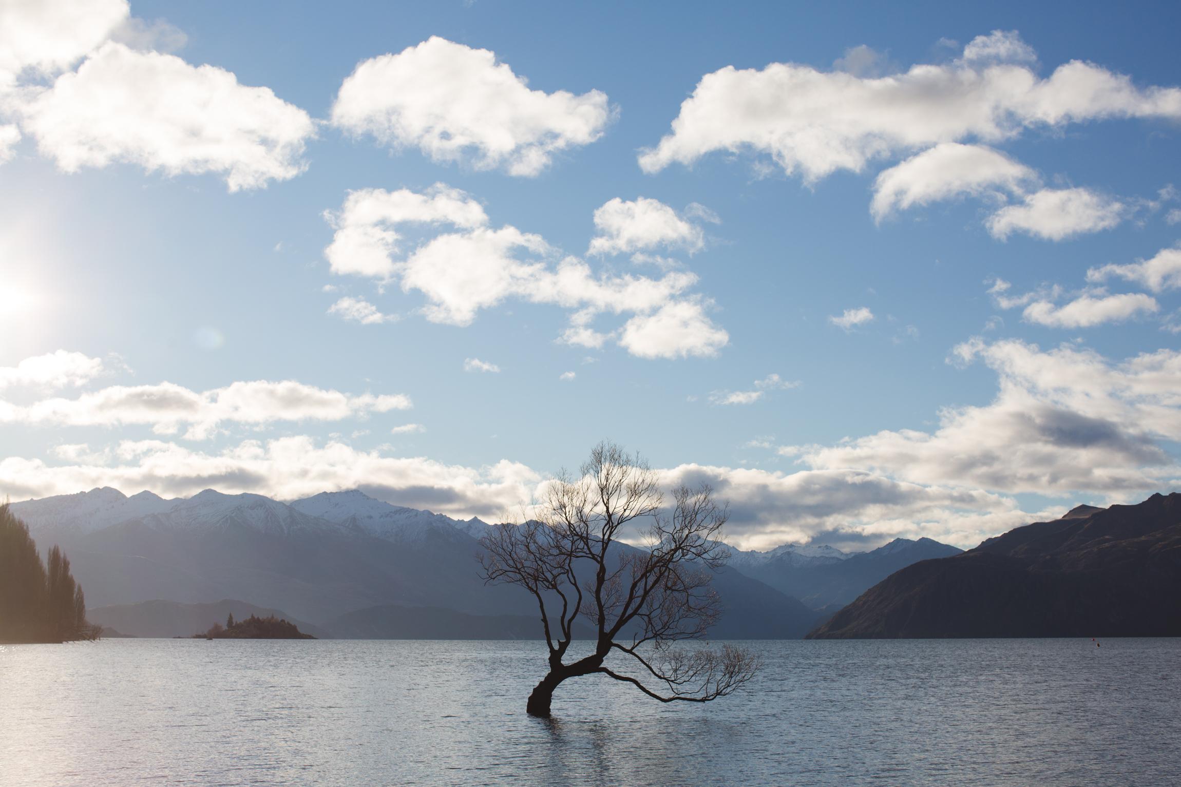 New Zealand-9355.jpg