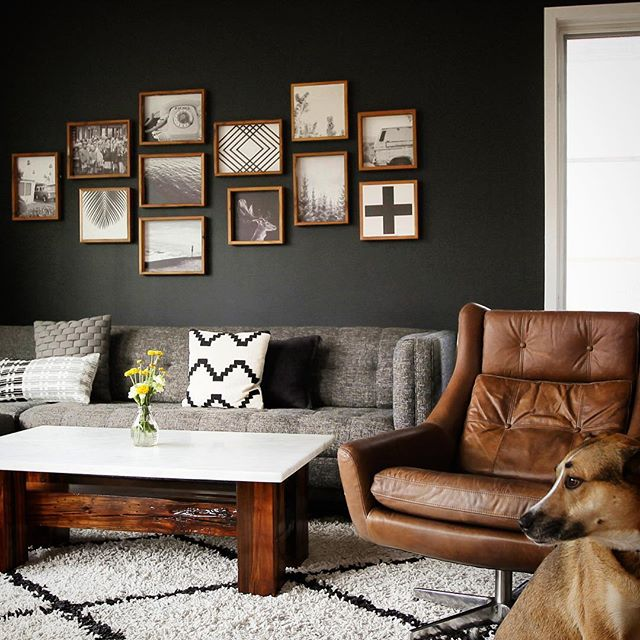 Loving this new #gallerywall  we just put up. Our dog Henry decided to pop his head in to the photo too! #stonepressprints  #printsonstone #holidaygiftidea #homedecor #blackwalls #joybirdfurniture