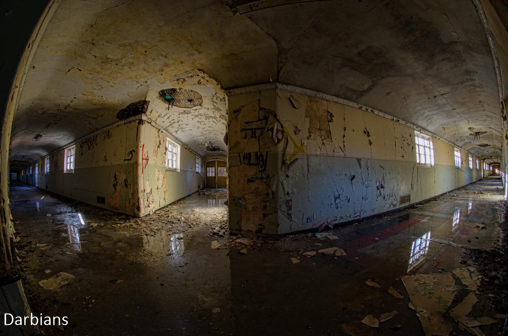 Severalls Corridors